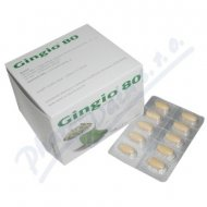 Gingio tbl.120x80mg